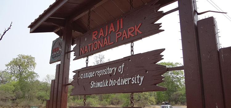 raja-ji-national-park